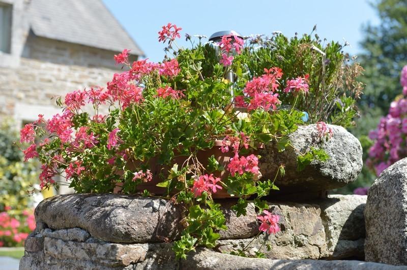 Locations Finistère Sud